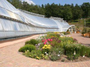 botanicka zahrada hl m prahy 6ea 300x225 Do pražské oázy klidu, zeleně a pestrých barev